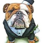 Filbert The Bulldog