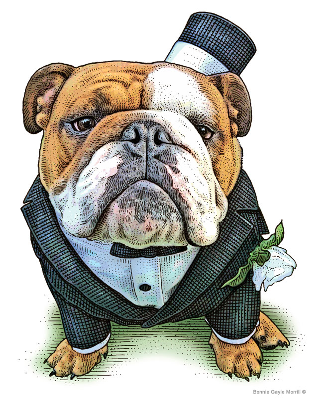 Filbert The Bulldog