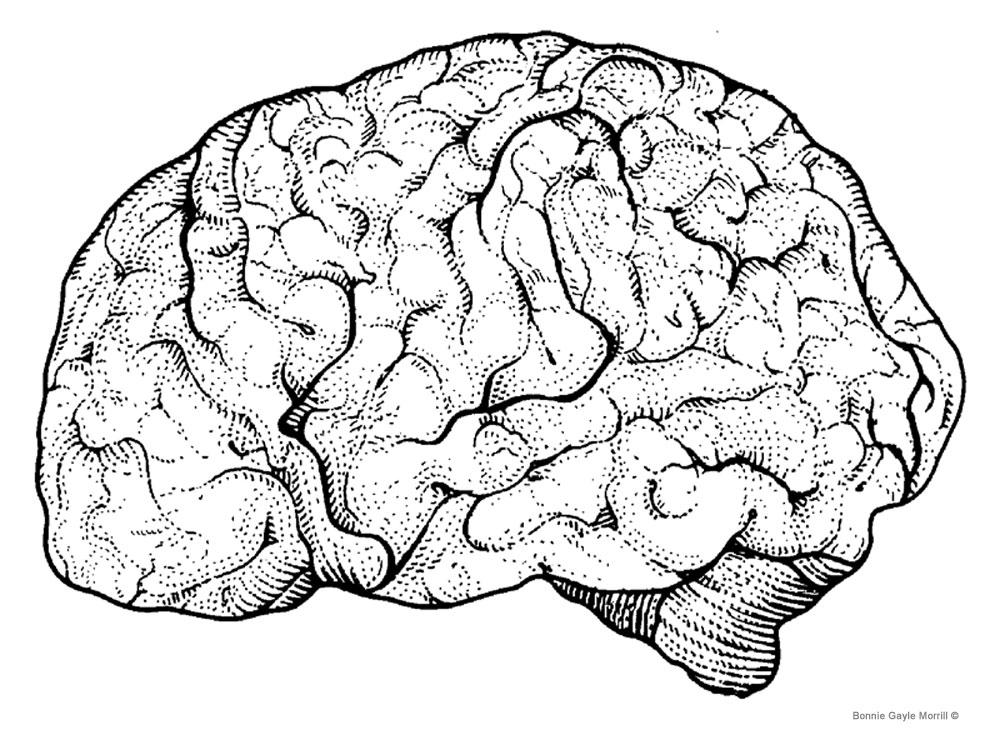 Psycho Brain